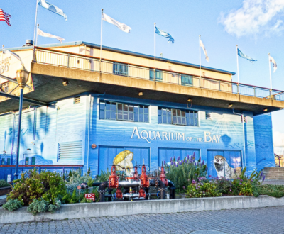 Aquarium of the Bay Discount Tickets