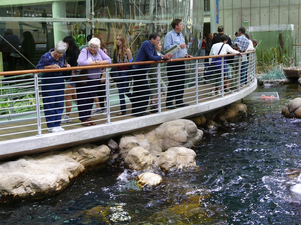 California Academy Of Sciences Ticket Deal Review