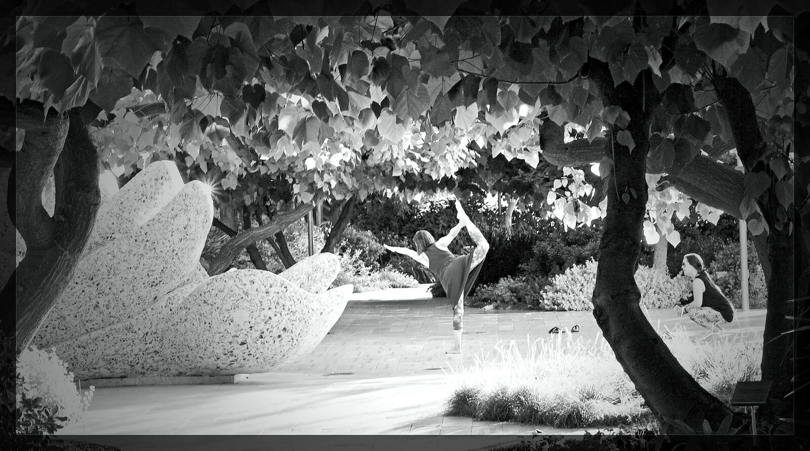 Garden at Disney Concert Hall LA