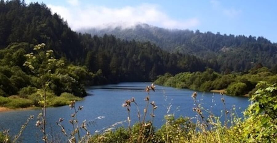 Russian River Sonoma: Tour Discount