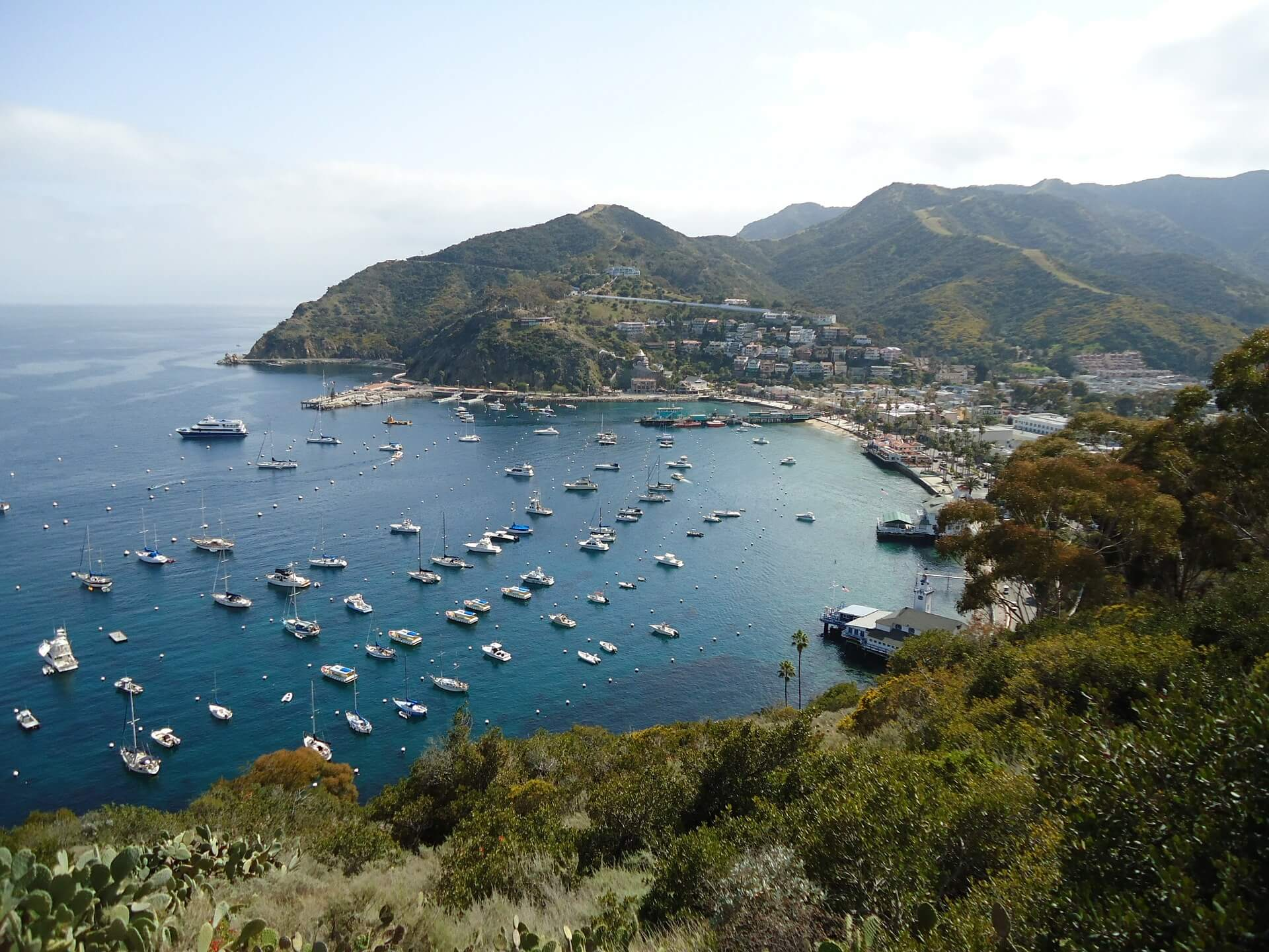 Catalina Island Vacation activities and tours