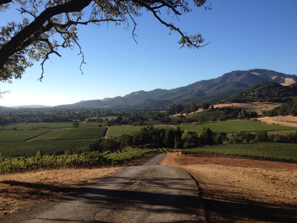 Napa Valley wine country bike tour